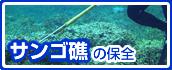 サンゴ礁の保全