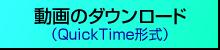 動画ダウンロード(QuickTime形式)