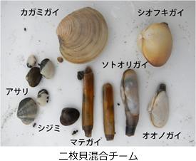 kenkyu02-07.jpg