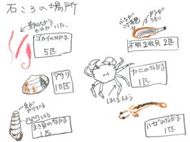 kenkyu03-11.jpg
