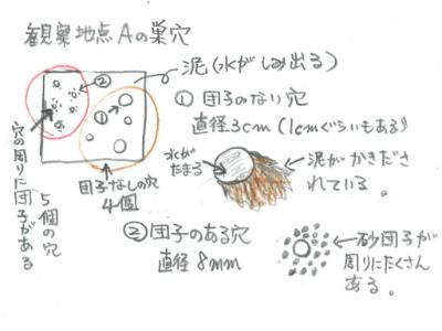 kenkyu04-05.jpg