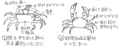 kenkyu04-08.jpg