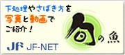 JF-NET 旬のお魚